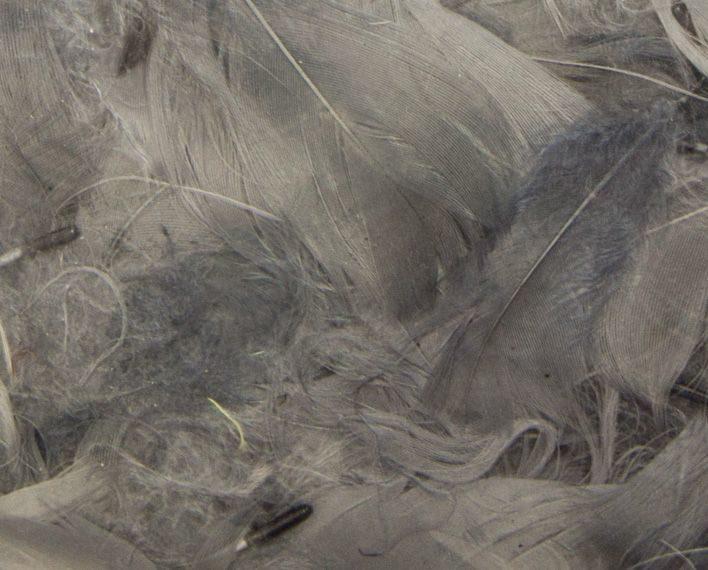 Askaretta Teemat Paasiainen Hoyhen Efco Harmaa 5231
