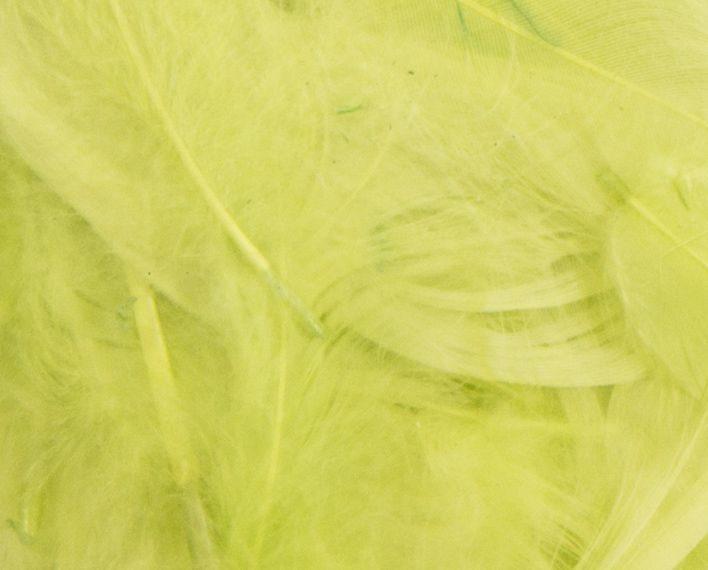 Askaretta Teemat Paasiainen Hoyhen Efco Lime 5230