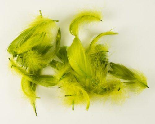 Askaretta Teemat Paasiainen Höyhen Oliivi 6093