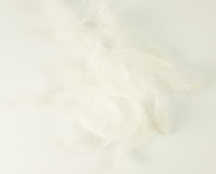 Askaretta Teemat Paasiainen Hoyhen Valkoinenisoras 6083